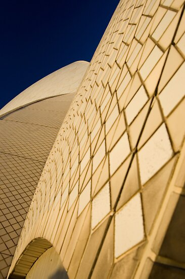 Sydney Opera House by Robert Scammell