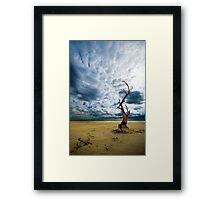 Murray River   Sth Australia Framed Print