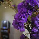 Bokeh in the Home by Jennifer Ellison