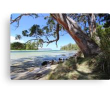 Bruny Island's Cloudy Bay Lagoon entrance Canvas Print