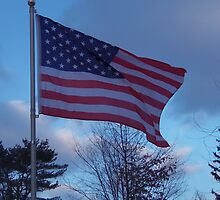 Flag of the USA, Red, White and Blue by LeonaPaints