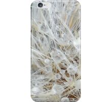 Icy Dandelion Puff iPhone Case/Skin