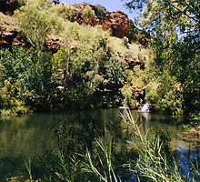 Dales Gorge, Karijini National Park. by Honor Kyne