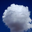 Cotton Wool Cloud by Noel Elliot