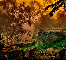 """""""A Moment in the Mist"""" by Phil Thomson IPA"""