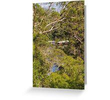 Beedelup National Park, Nr. Pemberton, Western Australia #2 Greeting Card