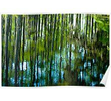 Réflexions D'arbre  Poster