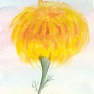 Marigold Puff Ball by Anne Gitto
