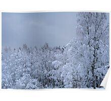 Winter in Norway Poster