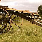 Rustic cart taken on property near Ballarat by Steve Van Aperen