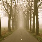 Lonely Road, Holland by Steve Van Aperen