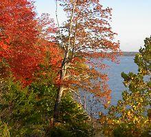 Truman Lake by katherinmm