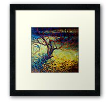 january dawn Framed Print