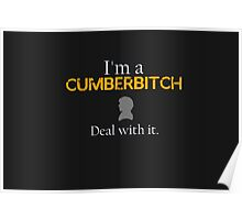 Deal with it: Benedict Cumberbatch Poster