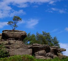 Brimham Rocks 5 by WatscapePhoto