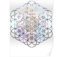Carina Flower of Life | Sacred Geometry Poster