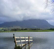 Mt Roland, from Paradise, Tasmania by gaylene