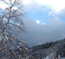 Blue trying to creep through dark snow clouds in Austria by Ronee van Deemter