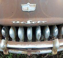 sharks teeth by Bill Manocchio