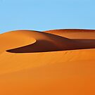 Desert sands #1 by Peter Hammer
