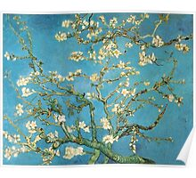 Vincent van Gogh, Blossoming Almond Tree Poster