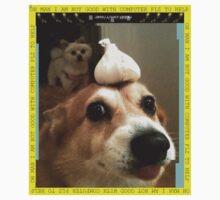 gralic dog heh by Dykland Wonderbread
