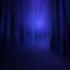 THE BLUE FOREST by leonie7