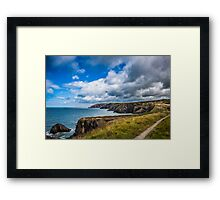 Pembrokeshire Coastal Path Framed Print