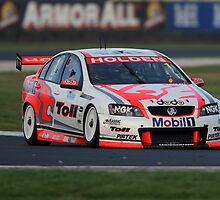 Holden's Garth Tander, Winner of the Phillip Island V8 SuperCar Race 2008 by Barrie Collins