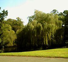 Waterlow Park London by jeanemm