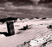 Sand Dune by Raymond  Ah Sing