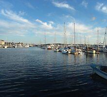 Newport Harbor by colleenboston