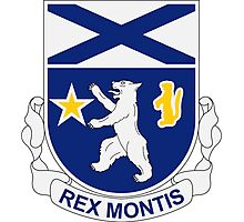 136th Infantry Regiment - REX MONTIS - King Of The Hill Photographic Print