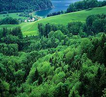 Lake Wolfgangsee by Walter Quirtmair