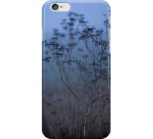 A Cold Autumn Morning iPhone Case/Skin
