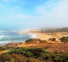 Paradise Limestone Coast by ein22