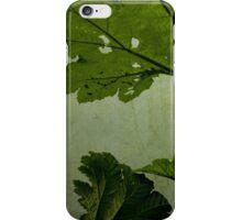 Green Gunnera iPhone Case/Skin