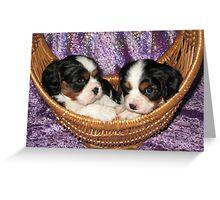 Cavalier Pups In Basket Greeting Card