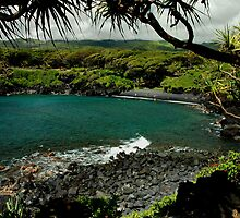 Honokalani Black Sand Beach, Maui by Stephen Vecchiotti