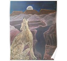 Coyote Sings Down the Moon Poster