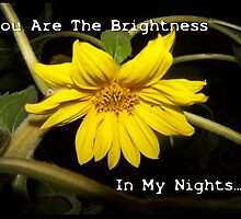 You Are The Brightness In My Nights.... by Jonice