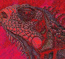 iguana 2 by dnlddean