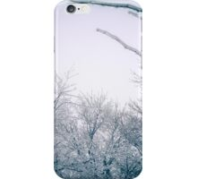 Winter in Elora, Ontario iPhone Case/Skin
