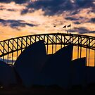Sydney Opera House and bridge as the sun goes down by Sheila  Smart
