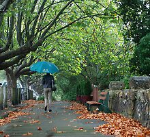 Megalong Street, Katoomba by andreisky