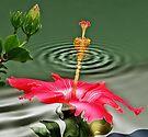 Water flower by LudaNayvelt