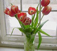 Tulips in winter by Ronee van Deemter