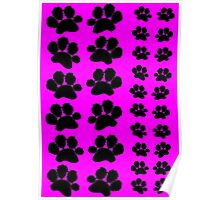 Paw Prints on Pink Poster