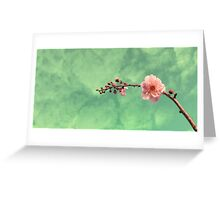 Spring Dreaming Greeting Card