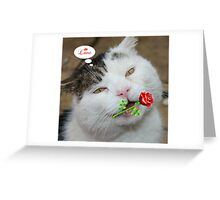 Butch Valentines Greeting Card